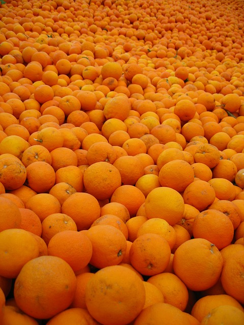 Free orange spain sunny oranges citrus vitamins