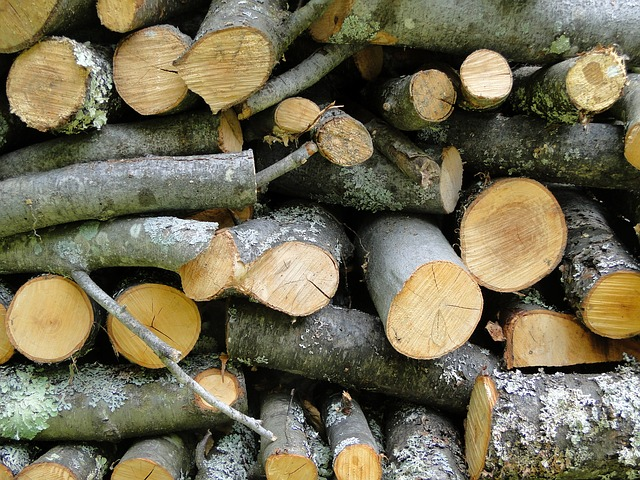 Free wood cord wood logs firewood stack stacked pile