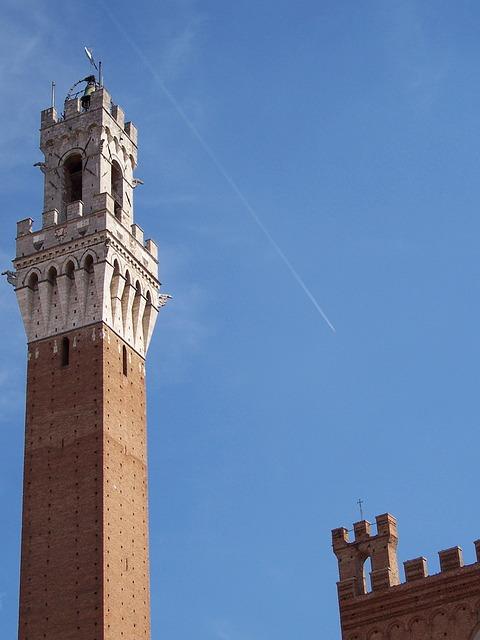 Free torre siena medieval tower tuscany italy plane