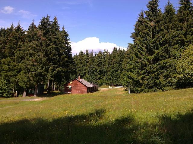 Free erbeskopf germany landscape log cabin forest trees
