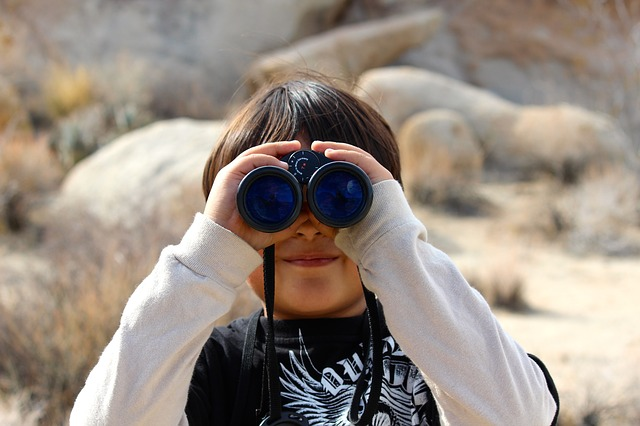 Free               binoculars child magnification lookout look binocs