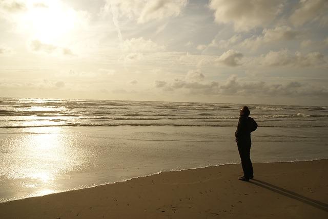Free zandvoort man person beach sun sunset wave