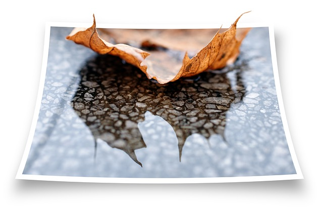 Free journal marble rain water mirroring autumn