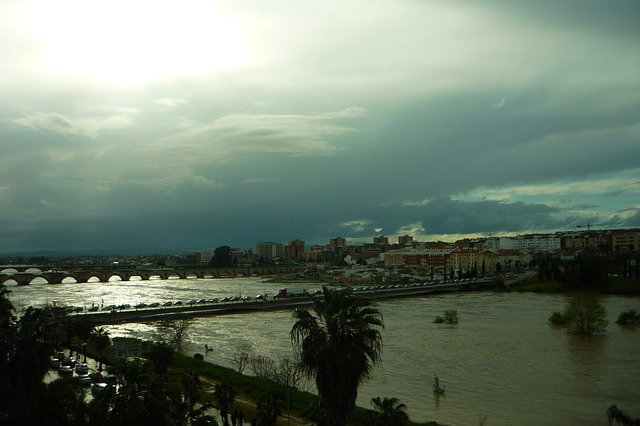 Free guadiana river flood grown ride margins bridges