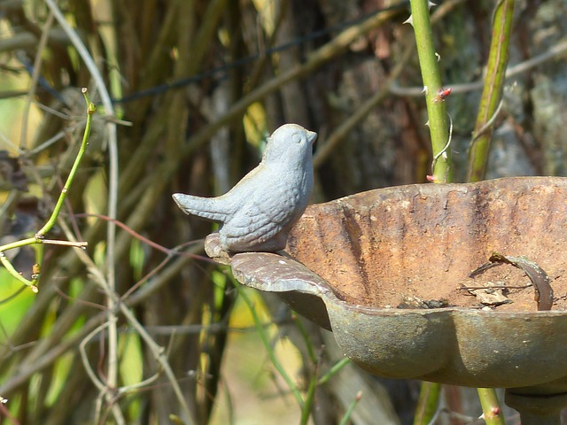 Free bird fig metal bird bath rust deco decoration