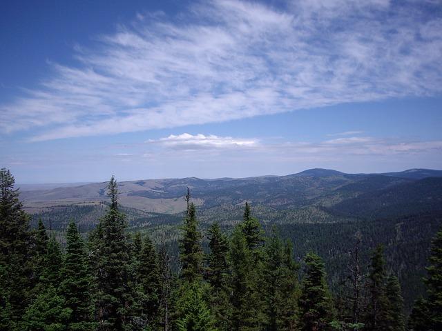 Free sky clouds blue sky trees