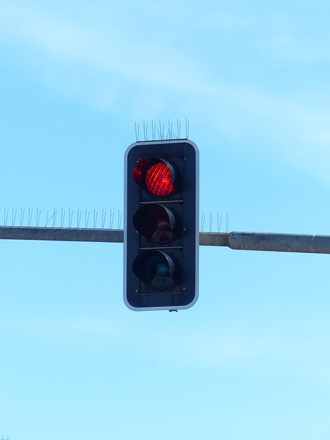 Free Photos: Traffic lights beacon rules of the road | Hans Braxmeier