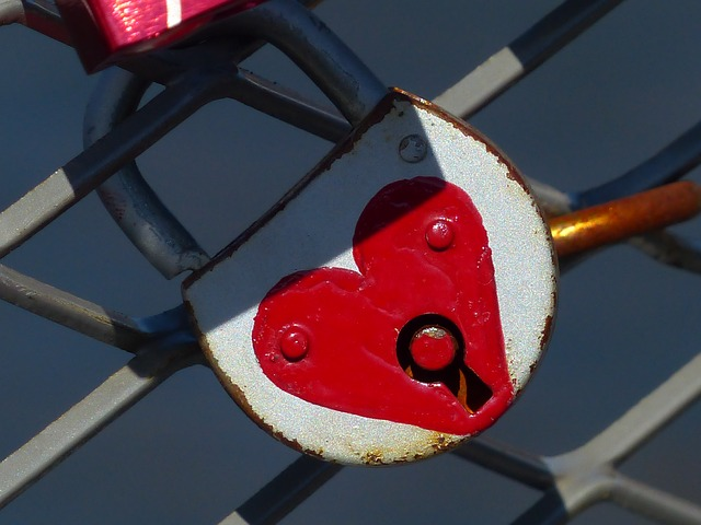 Free closed castles fence love love castle love locks