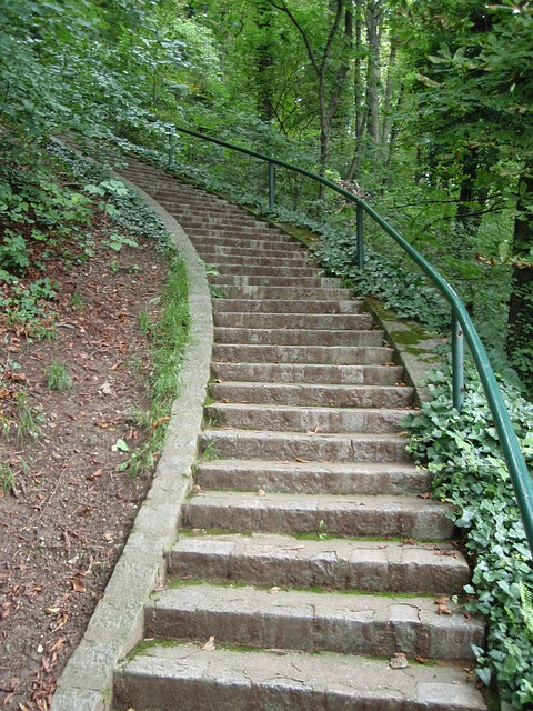 Free stairs graz schlossberg hiking walk green leaves
