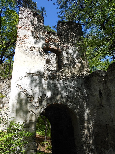 Free castle tower ruin fortress lower austria swim