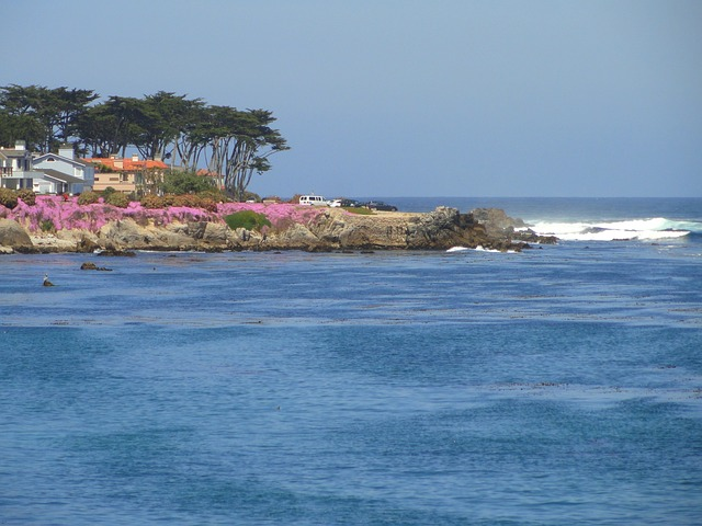 Free pacific grove california sea ocean water sky