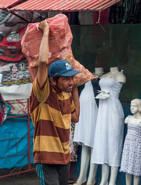 Free maracaibo man working bag produce shop business