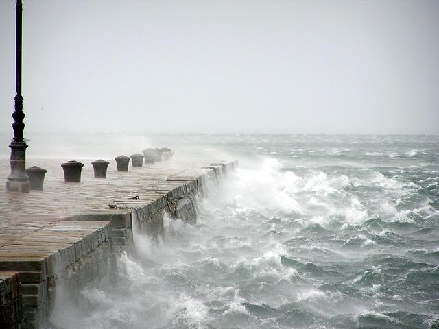 Free bora wind stormy sea