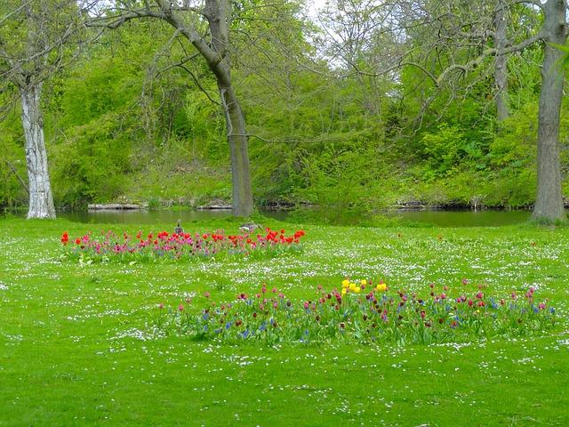 Free copenhagen denmark landscape scenic park grass