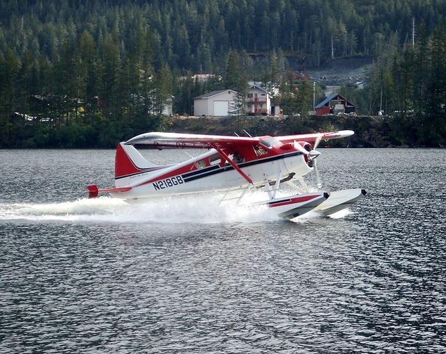 Free float plane seaplane flying aerial alaska lake