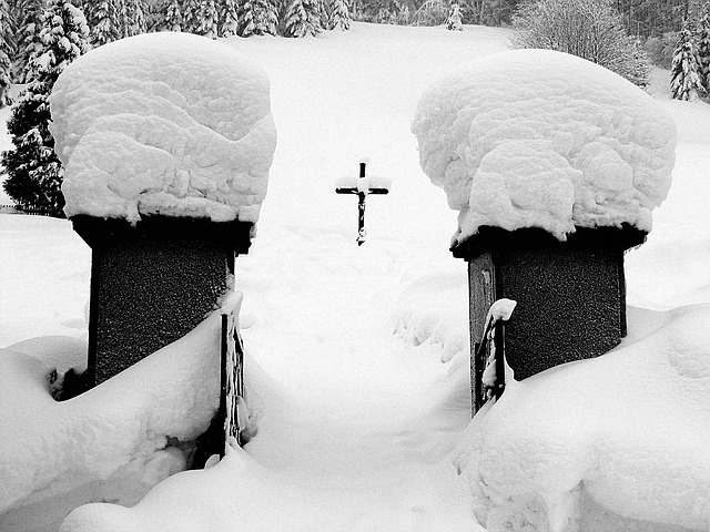 Free cemetery winter cross input snow black and white