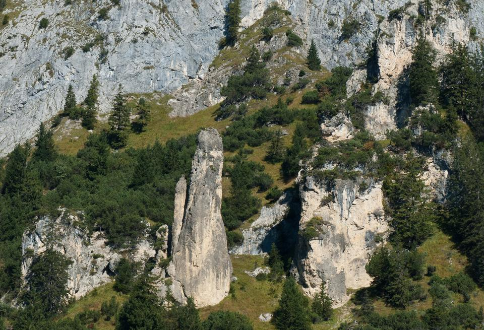 Free Reichenhaller limestones in the Eastern Alpine