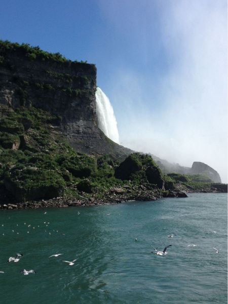 Free A ferry of the Maid of the Mist boat tour