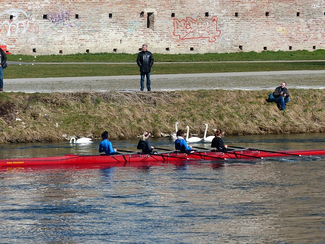 Free river wall rowing rower water water sports human