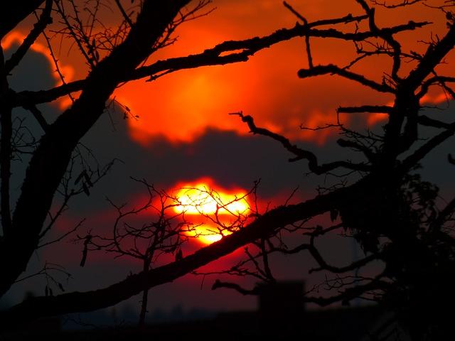 Free sunset sun sky light burn glow silhouette