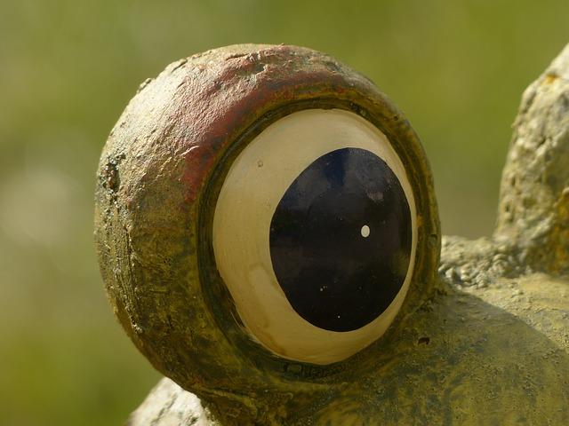Free style of eye eye view look eyeball fig
