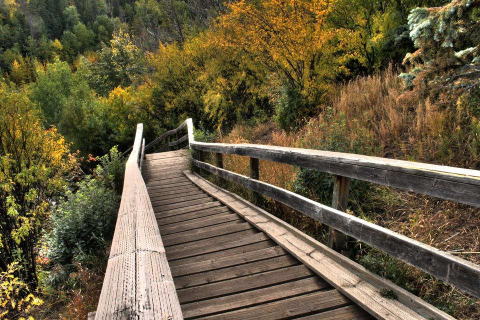 Free A wooden staircase in North Saskatchewan River valley