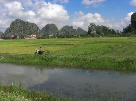 Free Halong Bay, Vietnam
