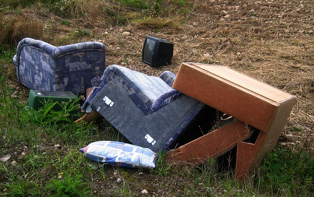 Free chair couch garbage bulky waste furniture wild