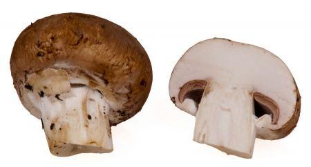 Free Fresh brown mushrooms