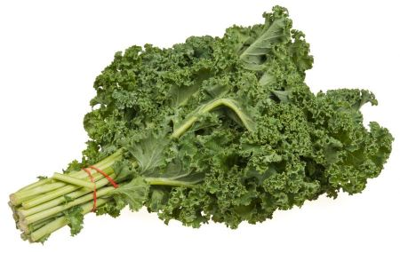Free freshly harvested kale cabbage on a white background