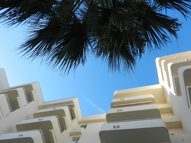 Free hotel complex hotel palm trees homes sky building