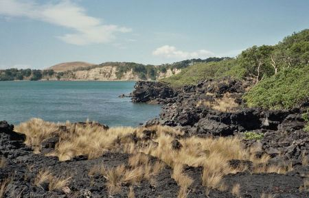 Free Lava beach on Rangitoto Island with Motutapu Island