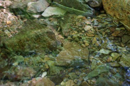 Free Collection of river rock in a stream