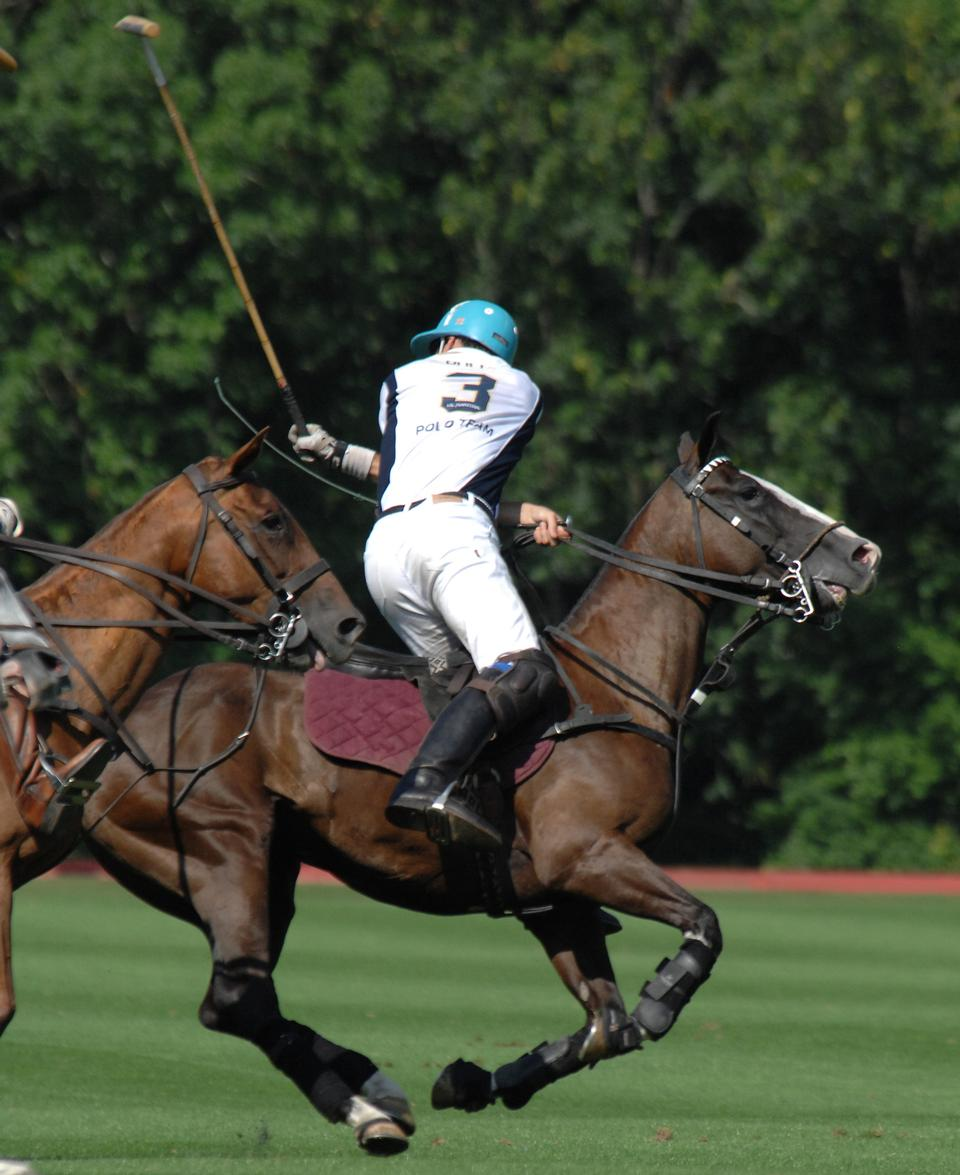 Free polo player swinging at ball