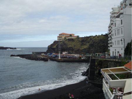 Free Dracaena draco in Icod de los VInos, Tenerife, Canary Island