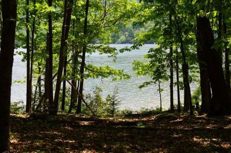 Free Beautiful summer water landscape in sunbeam