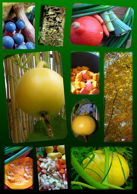 Free poster pumpkin autumn colorful decoration emerge