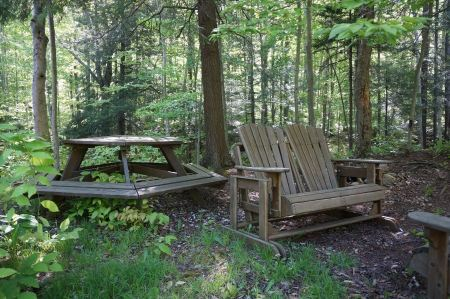 Free Wooden Chairs in Log Cabin