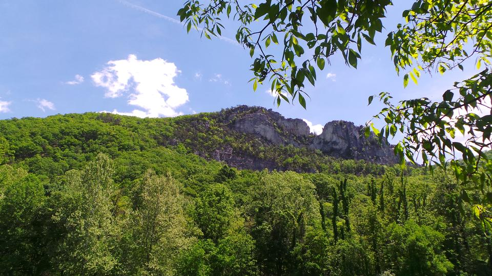 Free Spring View of Seneca Rocks, West Virginia Horizontal