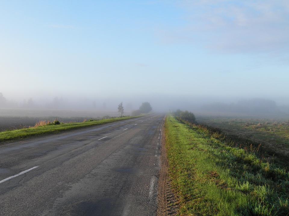 Free Road with fog in the morning