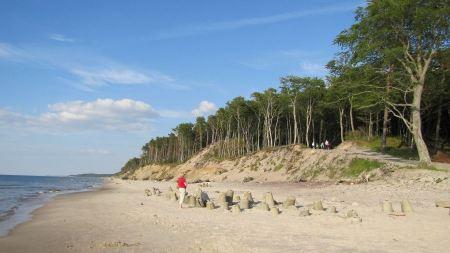 Free Tropical White Sand Beach