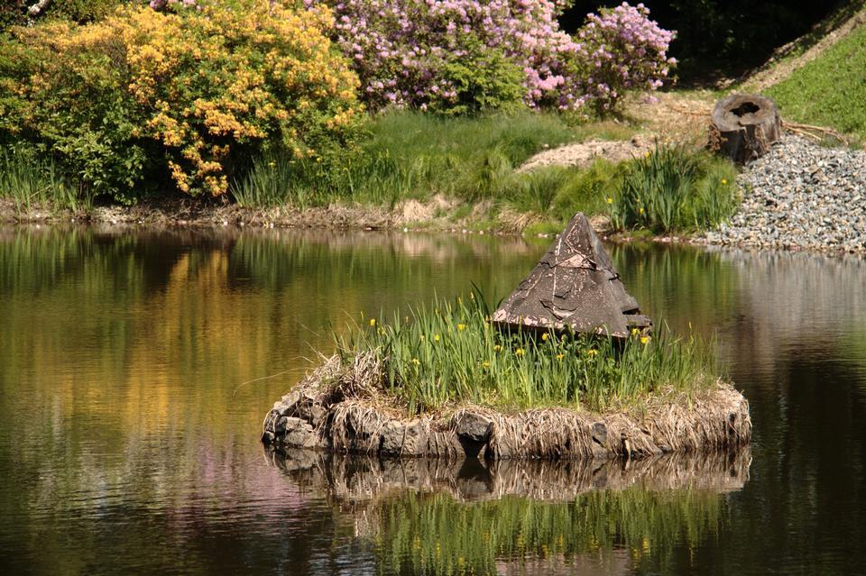 Free Beautiful summer Park