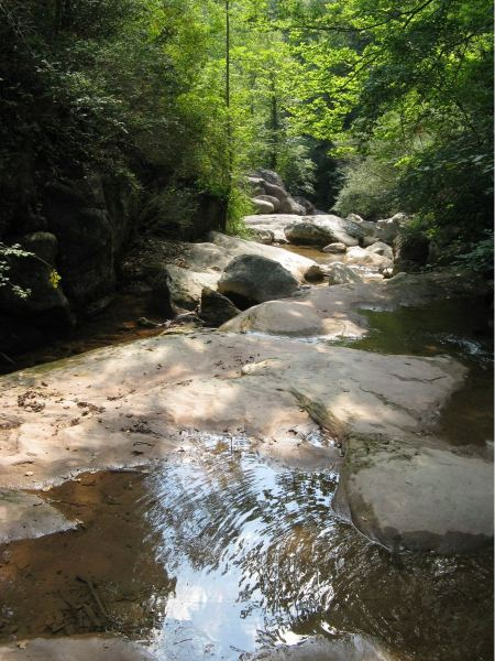Free Mountain river with stones