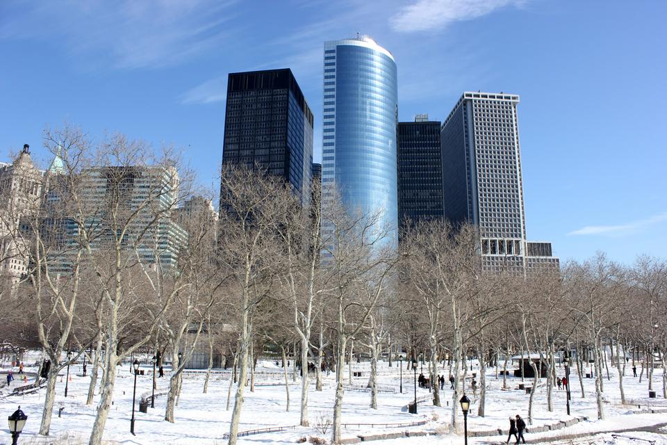 Free Battery Park under december's snow