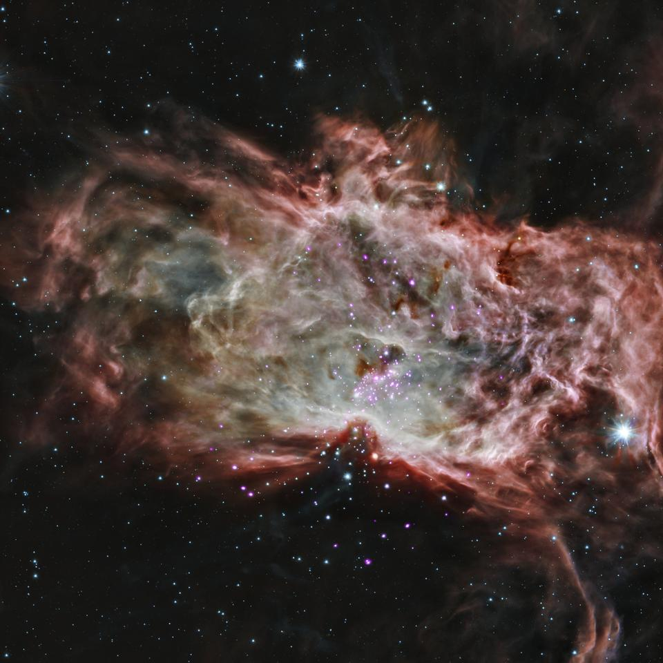 Free Inside the Flame Nebula