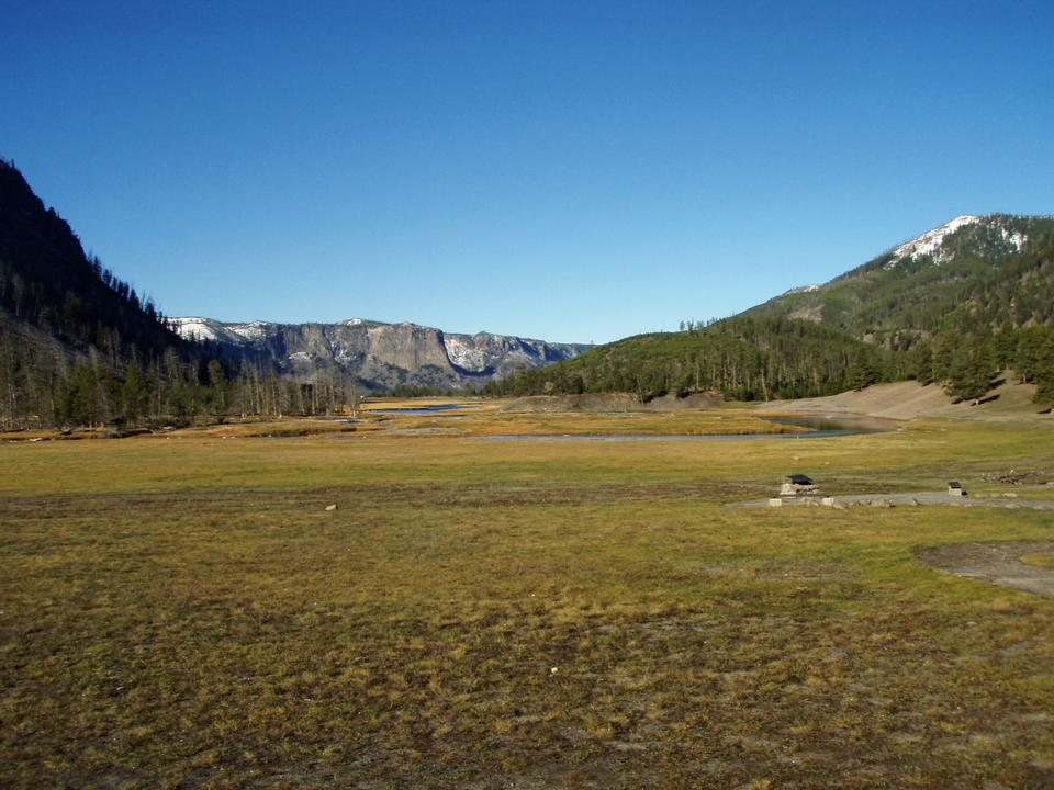 Free Meadow, Madison Junction, Yellowstone National Park