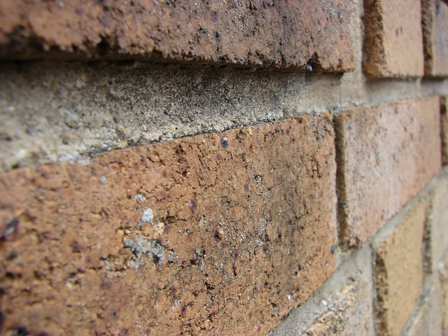Free wall brick brick wall red bricks materials
