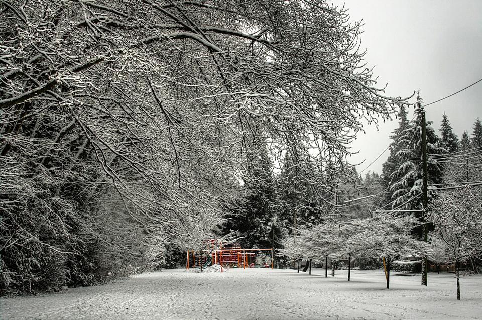 Free Murdo Frazer Park in Vancouver, Canada