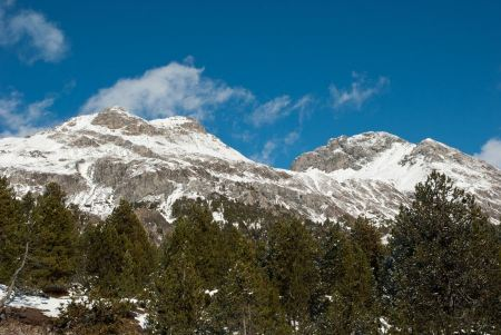 Free Fuorn Pass Mountain pass in Switzerland