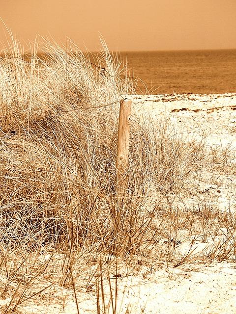 Free beach sand north sea